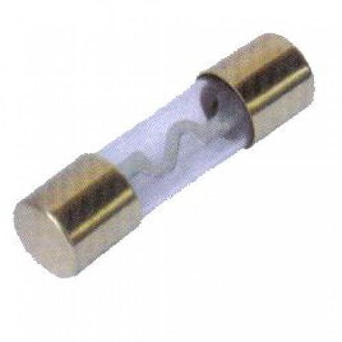 Fusível AGU-G ZH229G 10x38mm 40A Dourado